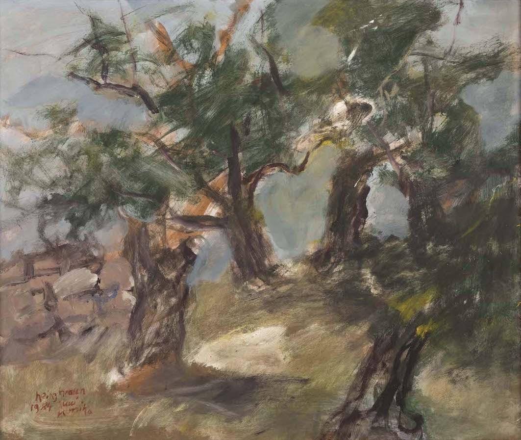 Olivenbäume, Korsika 1984