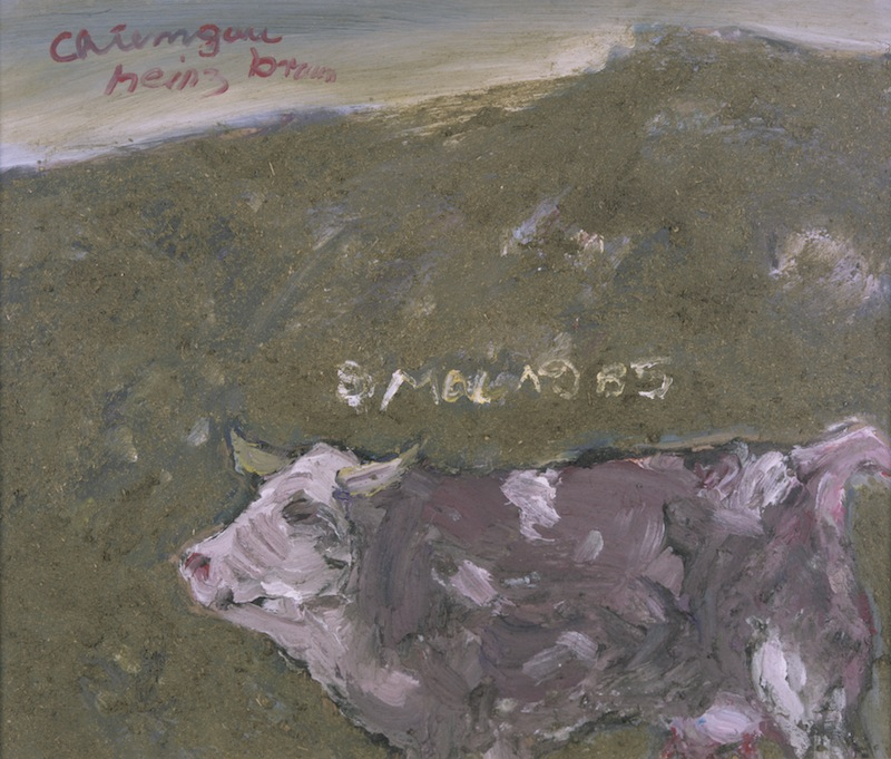 Chiemgau Kuh, 1985