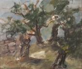 129 Olivenbäume, Korsika 1984
