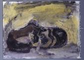 034 Schuh, 1985