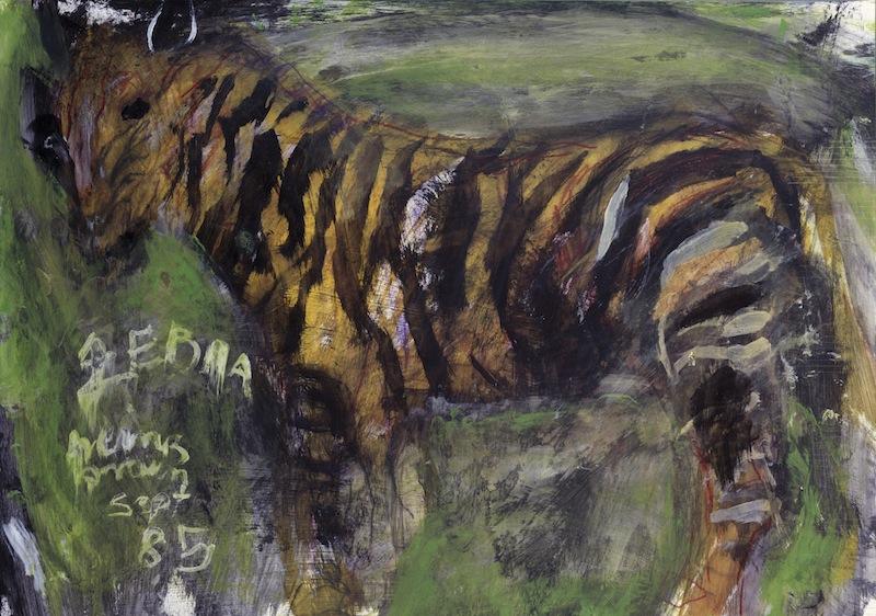 Zebra, 1985